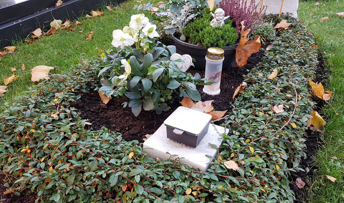 Grabgestaltung floral Grabpflanzen immergrün pflegeleicht Stauden Grabschmuck Bronze Friedhofsgärtner Vaterstetten