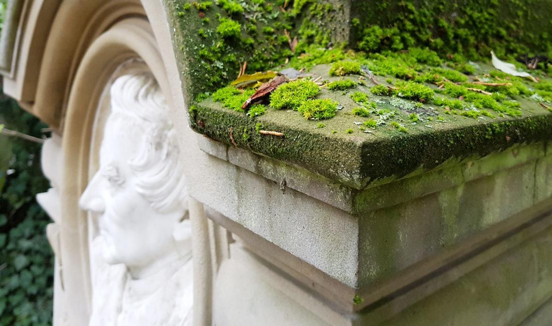 Grabstätte historisch antik Sockel Sandstein Moos Steinreinigung Steinmetz Wiesbaden